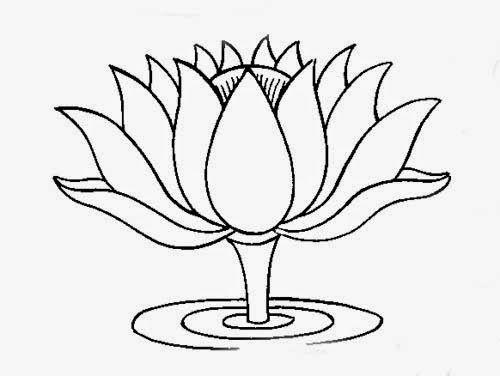 Gambar mewarnai bunga teratai