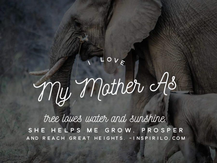 kata kata untuk ibu dalam bahasa inggris