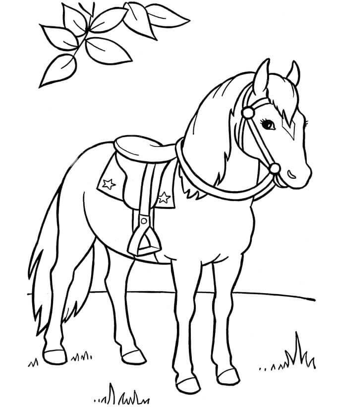 108 Gambar Sketsa Hewan Kuda Gratis Terbaru